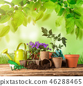 Gardening tools and flowers on wooden table. 46288465