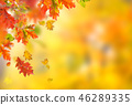Falling autumn leaves background. Lots of copy space. 46289335