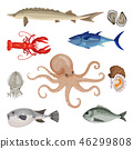 Detailed flat vector set of different seafood. Edible marine products. Sea creatures. Fish, lobster 46299808