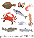 Set of various seafood. Fish, crab and mollusks. Marine animals. Sea creatures. Detailed flat vector 46299819
