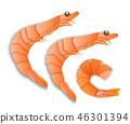 小虾 海鲜 矢量 46301394
