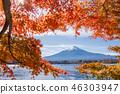 ภูเขาฟูจิ,ภูเขาไฟฟูจิ,ต้นเมเปิล 46303947