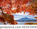 ภูเขาฟูจิ,ภูเขาไฟฟูจิ,ต้นเมเปิล 46303948