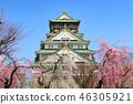 Sakura Castle Osaka Castle 46305921