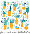 Vector collection of house plant 46305969