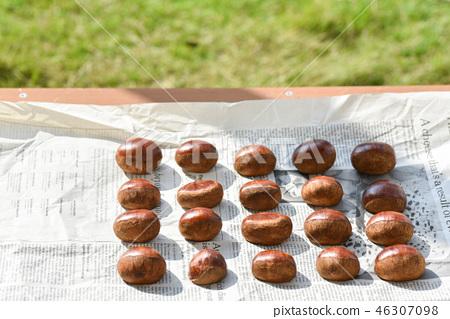 Sun-dried chestnut 46307098
