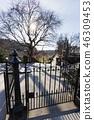 Princes street garden in Edinburgh 46309453