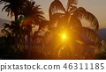 Palms on the tropical beach 3d rendering 46311185