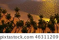 Palms on the tropical beach 3d rendering 46311209