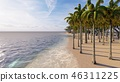 Palms on the tropical beach 3d rendering 46311225