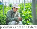 농업 남성 46315679