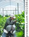 농업 남성 46315681