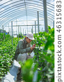 Agriculture men 46315683