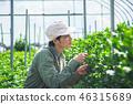 농업 남성 46315689