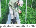 Agriculture men 46315707