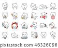 貓 感覺 情緒 46326096