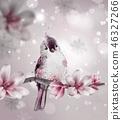 magnolia pink branch 46327266