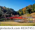 【เมืองชิซุโอกะจังหวัดอิสึ】เส้นทางรถไฟของสวนสนุก【อิสึชูเซ็นจินิจิโนะโนะซาโตะรถไฟ Romny ny 46347451