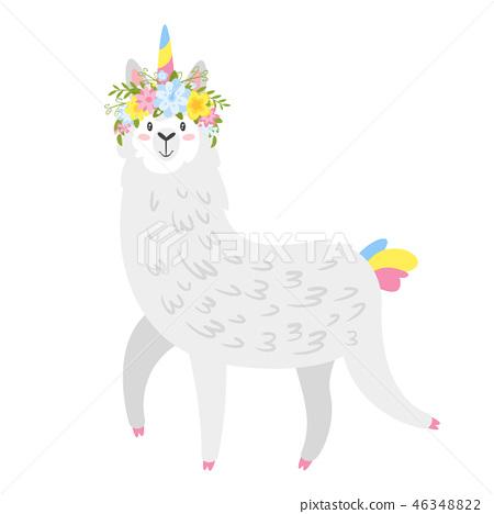 Cute lama. Alpaca animal 46348822