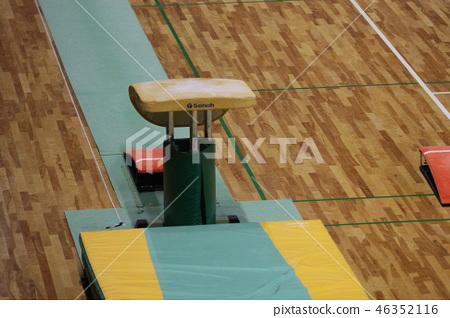 Gymnastics jumping horse 46352116