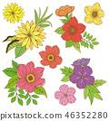 Flower pattern illustration material 46352280