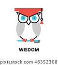 wisdom icon process 46352308