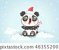 christmas hat animal 46355200