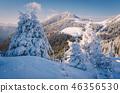 winter snow snowy 46356530