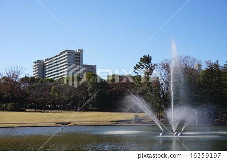 池塘噴泉在多摩中央公園 46359197