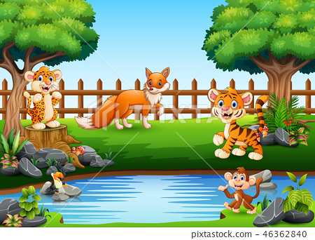 Wild animals playing on the edge of a small pond 46362840
