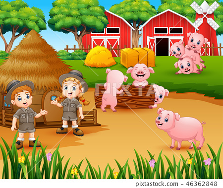 Zookeeper girl and boy with pigs in the farmyard 46362848