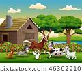 동물, 농장, 농원 46362910