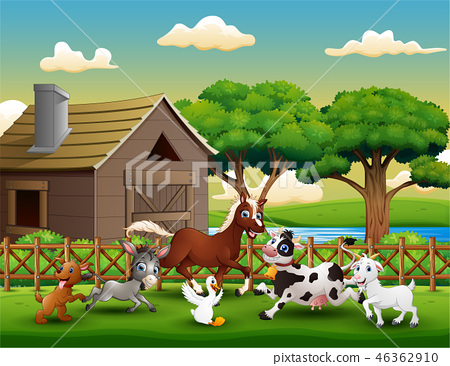 Happy farm animal playing outside the cage 46362910