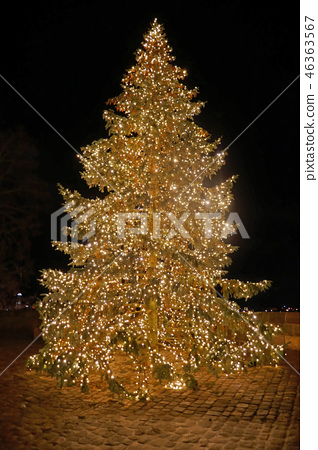 紐倫堡Kaiserburg聖誕樹 46363567