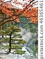 由志園 가을 단풍 놀이 46365461