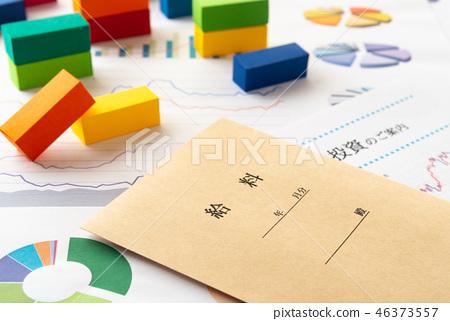薪資資產管理薪資信封使用情況圖薪資袋 46373557