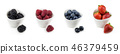 horizontal collection of berries in bowles 46379459
