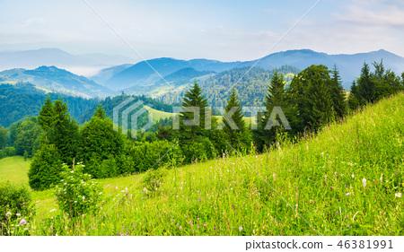 the dawn in mountains, summer season 46381991