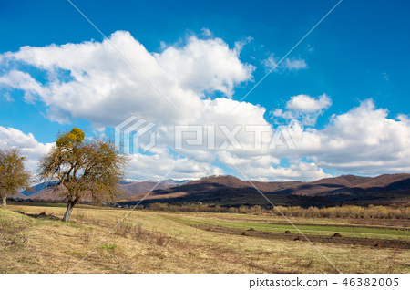 rural fields in mountains 46382005