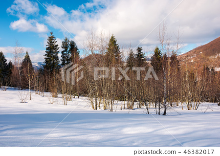 lovely winter scenery in mountains 46382017
