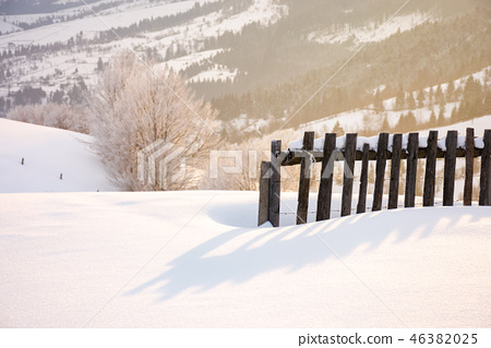 wooden fence in snow and morning sunlight 46382025