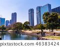 도쿄의 평화 공간, 하마 리큐 은사 정원의 봄 46383424