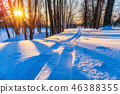 Ski track in winter forest 46388355