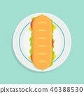 vector illustration of sandwich on plate 46388530