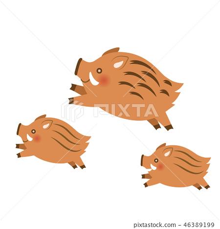 Three wild boars 46389199