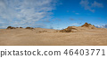 Rabjerg Mile is a migrating coastal dune, Denmark. 46403771