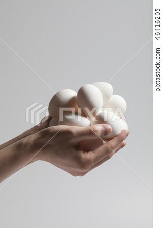 달걀 46416205