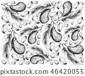 Hand Drawn Wallpaper of  Kola Nut Fruits on White  46420055