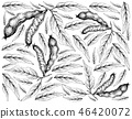 Hand Drawn Wallpaper of Ice Cream Beans on White B 46420072