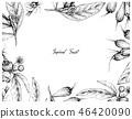 Hand Drawn Frame of Tropical Fruits Background 46420090